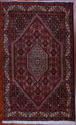 Persian Bijar